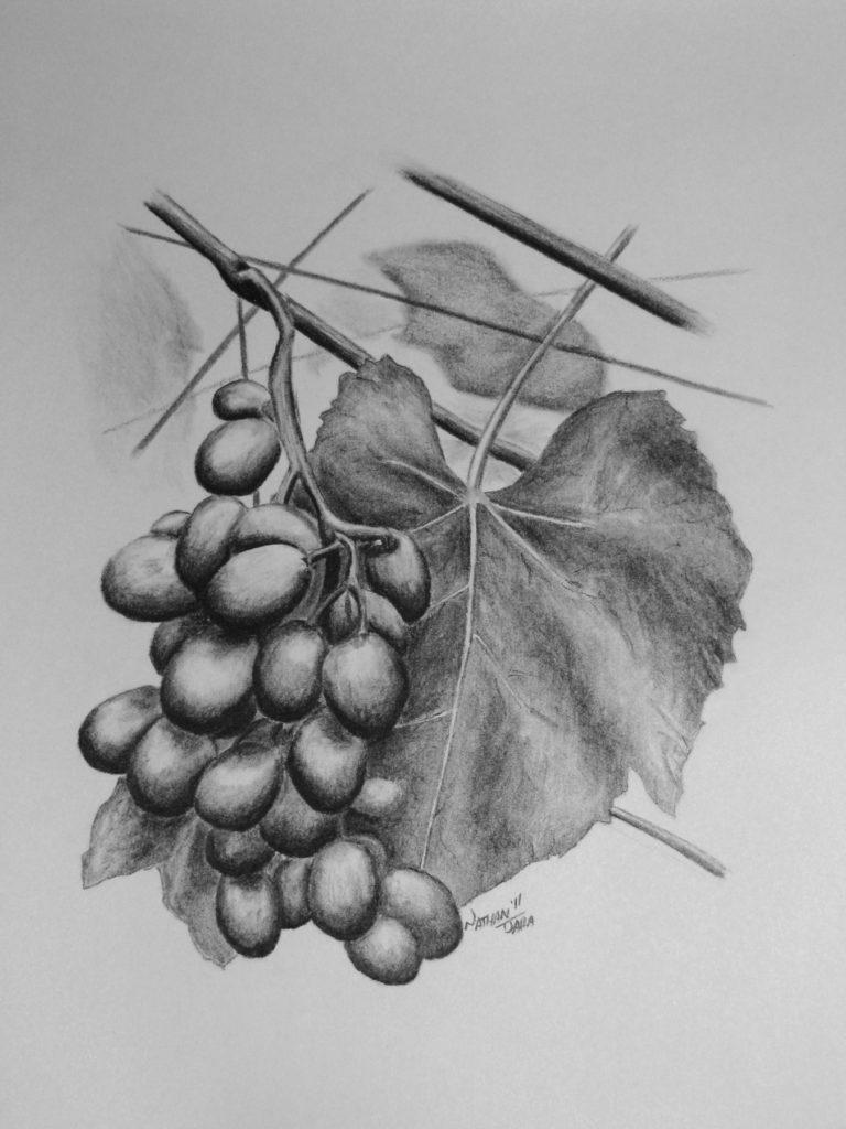 The Vine - John 15:1-8